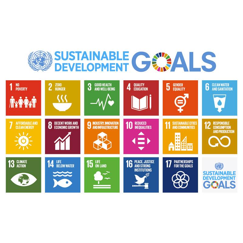 ASVIS e Agenda 2030